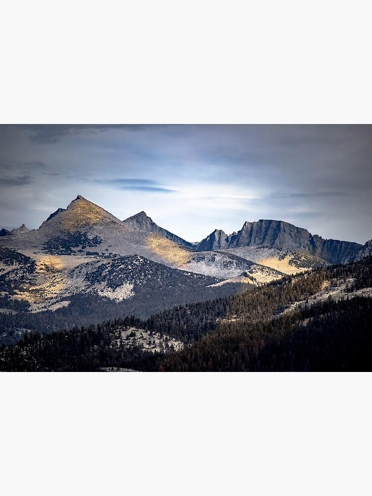 Golden Shadows Yosemite by designfly