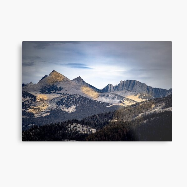 Golden Shadows Yosemite Metal Print