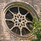 Sta Clara Convent . rosewindow. Santarém. by terezadelpilar ~ art & architecture