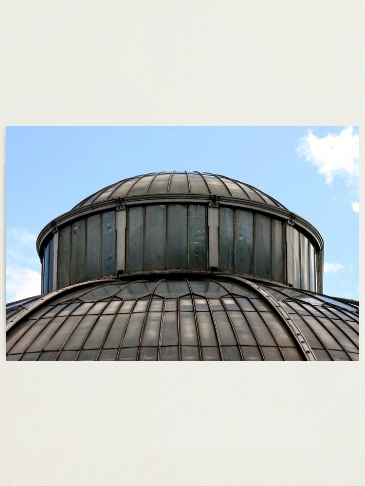 Alternate view of Palm House Photographic Print