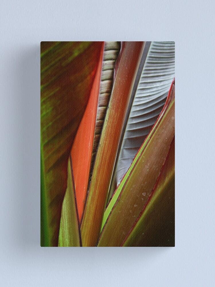 Alternate view of Banana Tree Detail Canvas Print