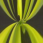 Vorhänge in grüner Zusammenfassung von Joy  Rector