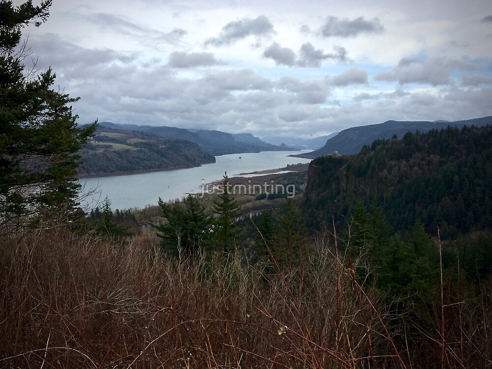 Columbia River Gorge 1 by justminting