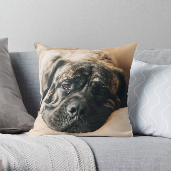 Presley Throw Pillow