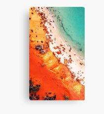 Coral On The Beach Metal Print