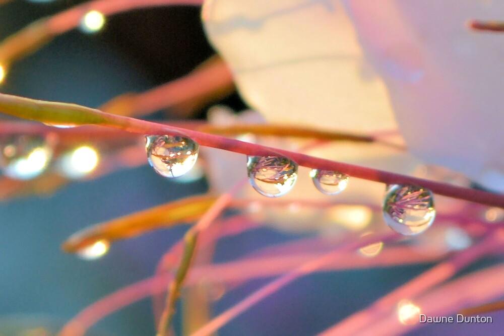 Morning Dew by Dawne Dunton