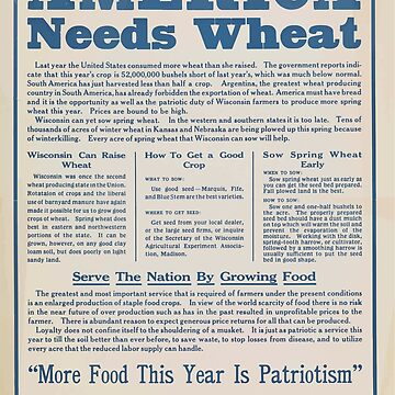 United States Department of Agriculture Poster 0284 America Needs Wheat More Food This Year is Patriotism by wetdryvac