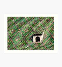 Green Tiled Roof Art Print