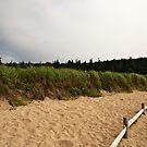 Sand Beach by Jonathan Eggers