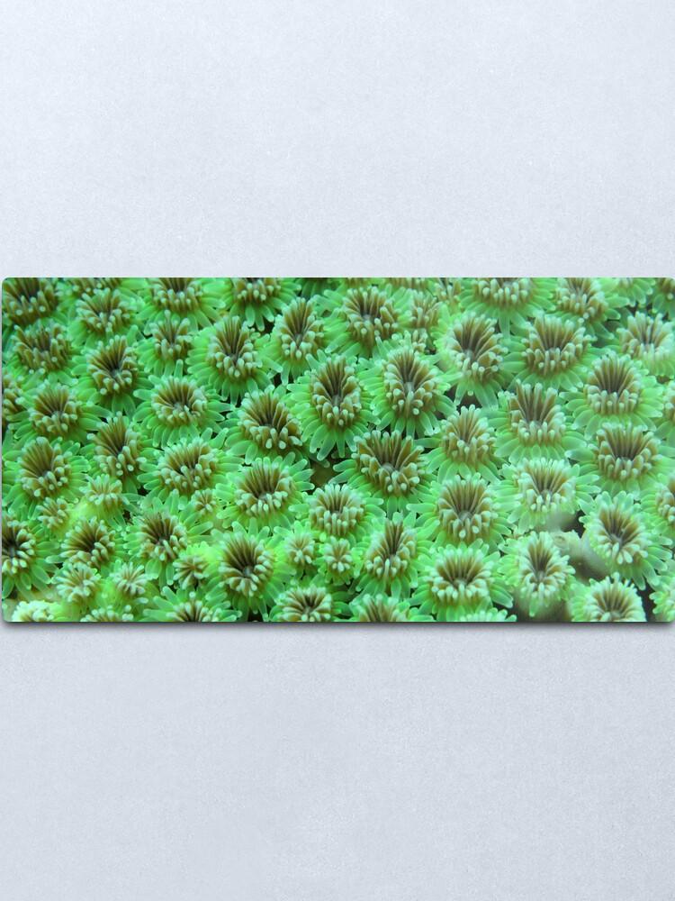 Alternate view of Green Galaxy Metal Print