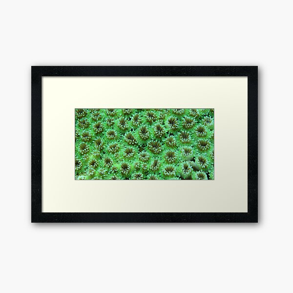 Green Galaxy Framed Art Print