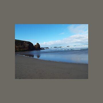 Serene California Beach Reflection by ccnnddrr55
