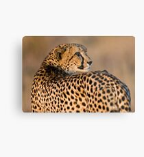 Yearning To Start The Hunt Metal Print