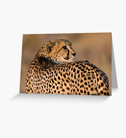 Yearning To Start The Hunt Greeting Card