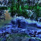Missouri River  by Tim Wright