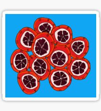 Pomegranates Sticker