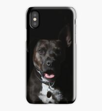 Butch The Pitbull iPhone Case