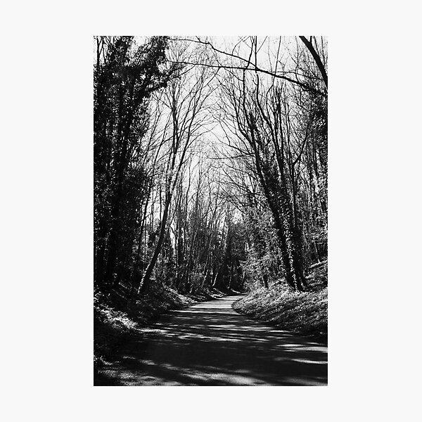 Track (B/W) Photographic Print
