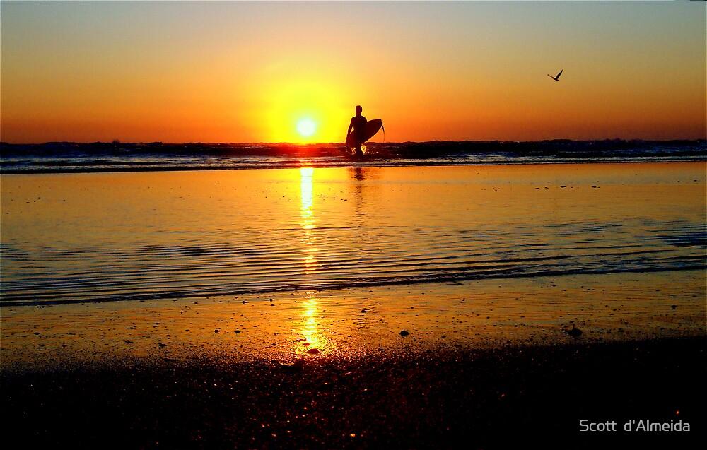 GREETING THE SUN by Scott  d'Almeida
