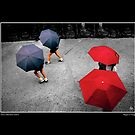 Nara Umbrellas Fine Art Poster by Wayne King