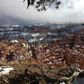 Bryce Canyon Winter by UrbanTailsGear