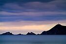 Nugget Point by Paul Mercer