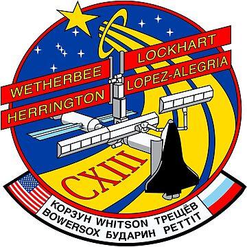STS-113 Mission Logo by Quatrosales