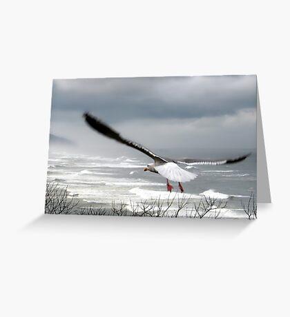 dreams take flight Greeting Card