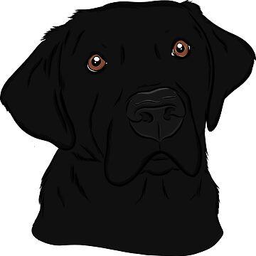 Handsome Black Labrador Retriever  by rmcbuckeye