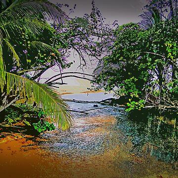 Deluge In Bocas Del Toro, Panama by alabca