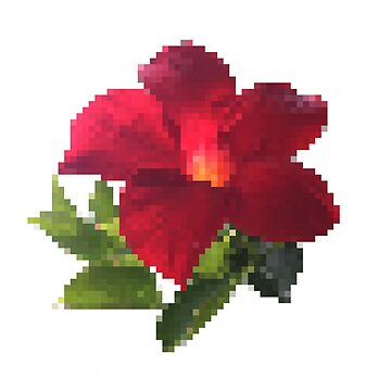 64bit Flower  by oneofakxnd