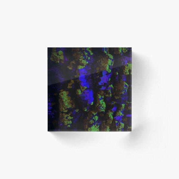 Moss 2 Acrylic Block