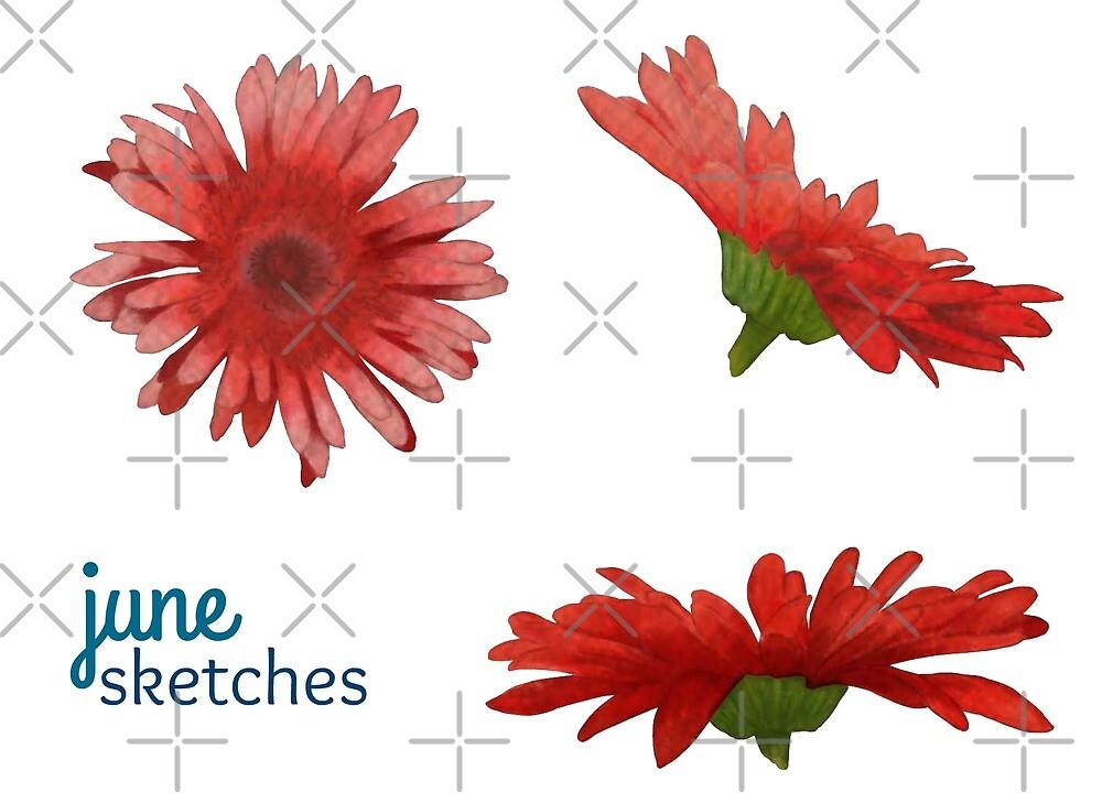 Digital Painting | Gerbera Flowers | Sticker Sheet by junesketches