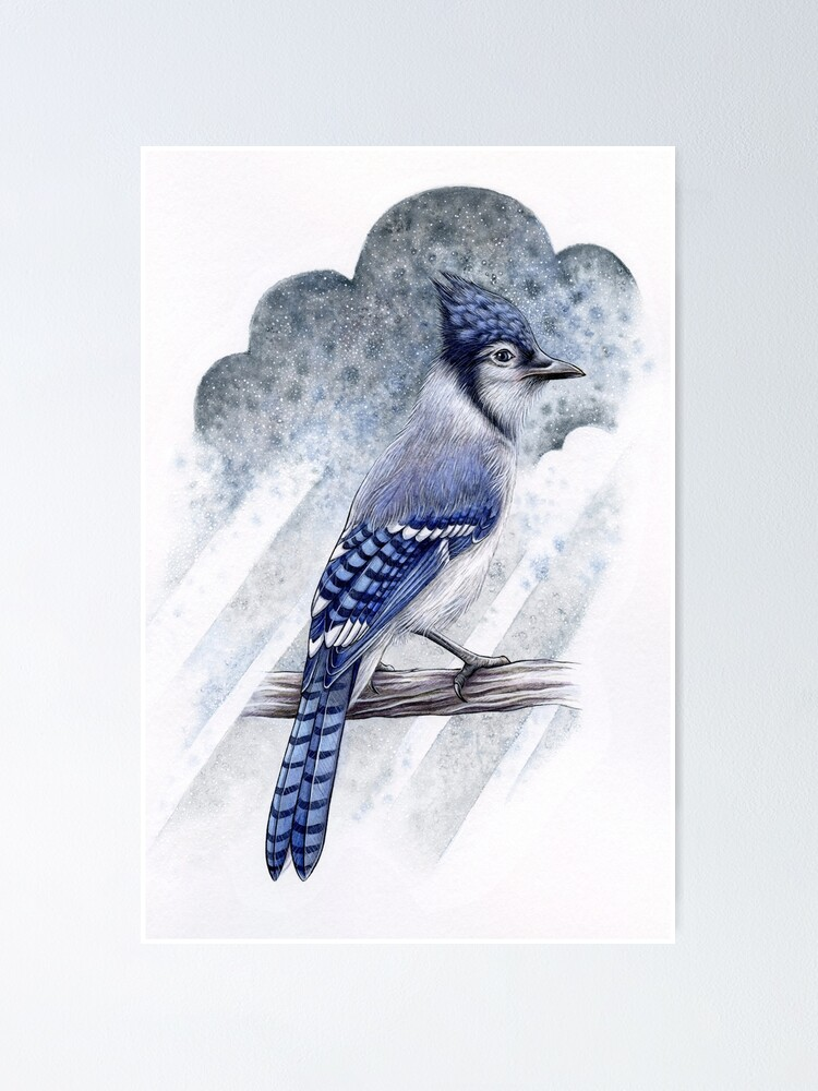 Alternate view of Blue Jay Poster
