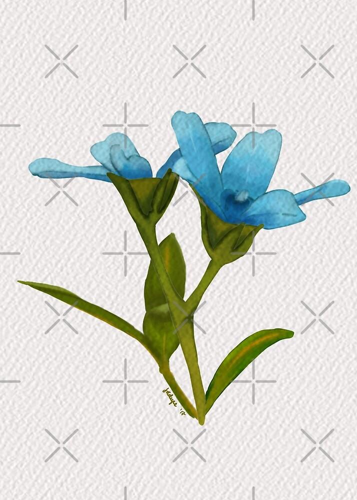 Digital Painting | Tweedia Blooms by junesketches