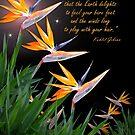 Bird of Paradise flowers with Kahlil Gibran quote von Irisangel