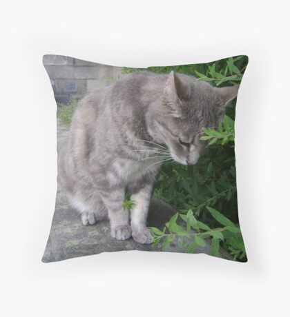 bush-cat.. oddly gripping! Throw Pillow