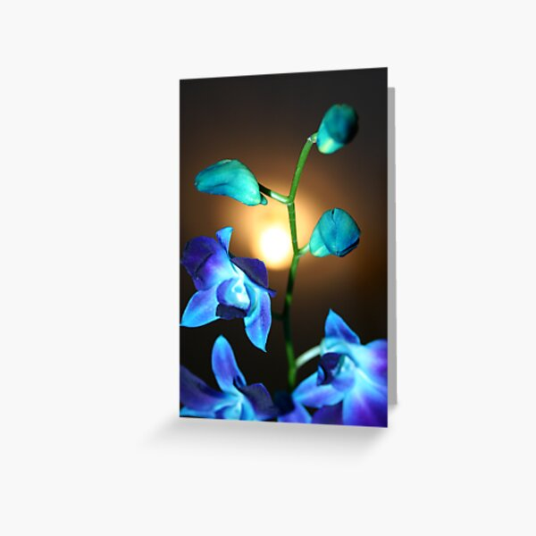 Blue Orchis stem Greeting Card