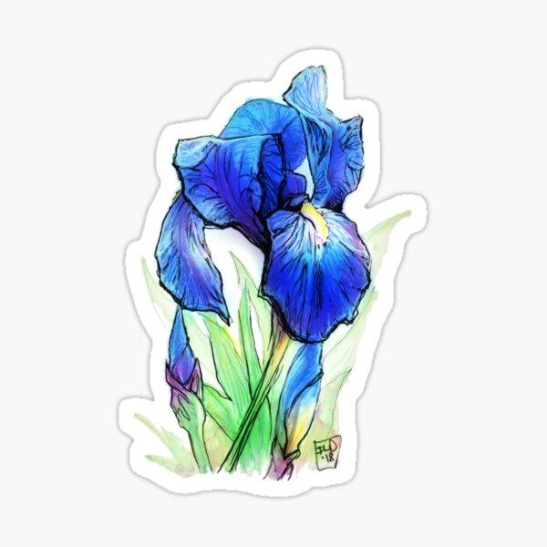 Bearded Iris Sticker