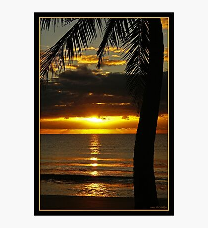 A Touch of Paradise Photographic Print