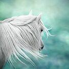 Windswept fantasy by Mitch  McFarlane