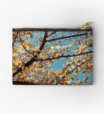 Yellow and Blue  Zipper Pouch