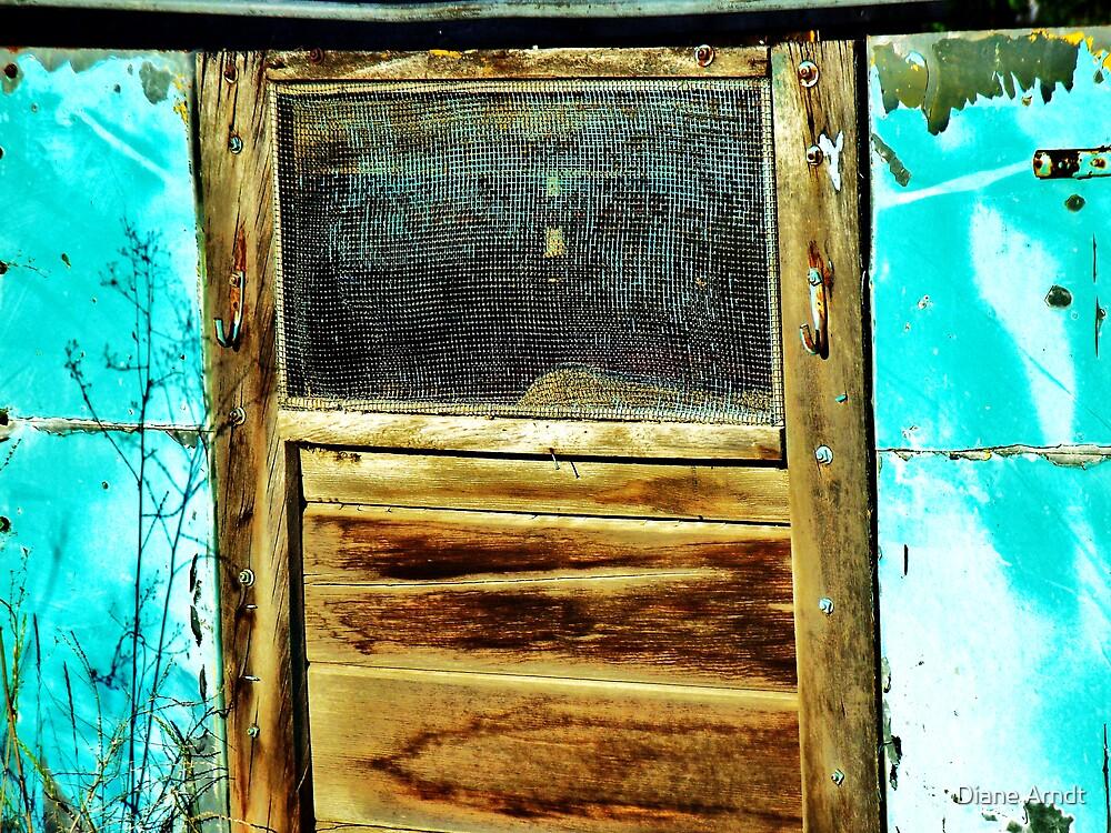Blue Screen Door by Diane Arndt