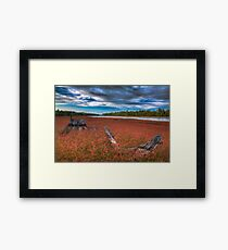 Wildflowers on the River Framed Print