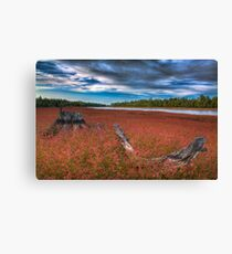 Wildflowers on the River Canvas Print