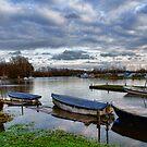 Norfolk Broads Early Winter  by Mark Snelling