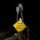 Dead End by John  Sperry