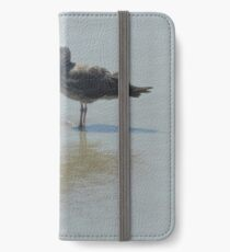 5_31_2018DNAnNum12 iPhone Wallet/Case/Skin