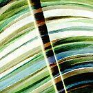 Leaf by Menega  Sabidussi