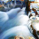 Ozark_Stream by Chip  Ford